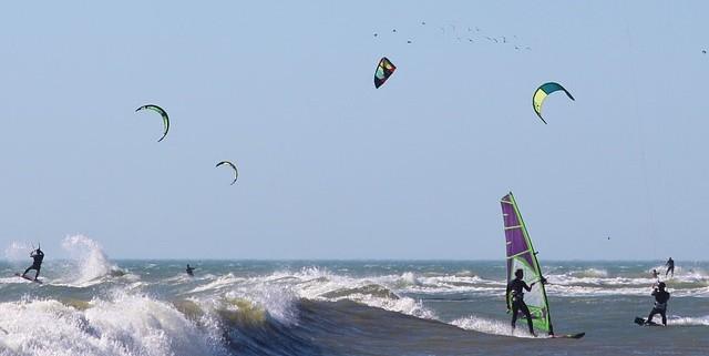 Reglas del Windsurf: Manual básico