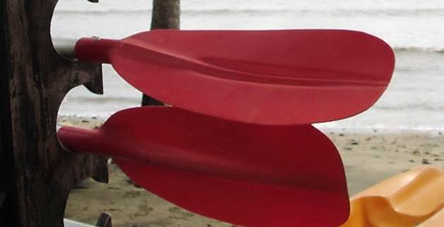Partes del paddle surf: tabla y remo